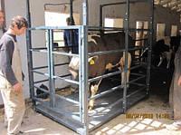 Весы для взвешивания свиней платформа 1.5 х 1.0 м