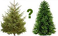 Чем отличается искусственная елка от сосны?