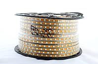 LED лента 5050 зеленые диоды бухта 100m