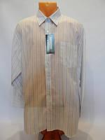 Мужская рубашка с длинным рукавом  bon jour