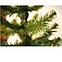 Искусственная елка ПВХ 0,75 м (75 см), фото 4