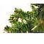 Искусственная елка ПВХ 0,75 м (75 см), фото 2