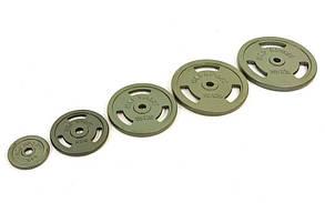 Блины стальные с хватом 5кг (диам. 30мм) TA-8030-5, фото 3