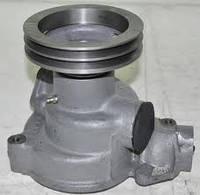 Насос водяной (помпа) КамАЗ 740.1307010-02, Помпа Камаз, фото 1