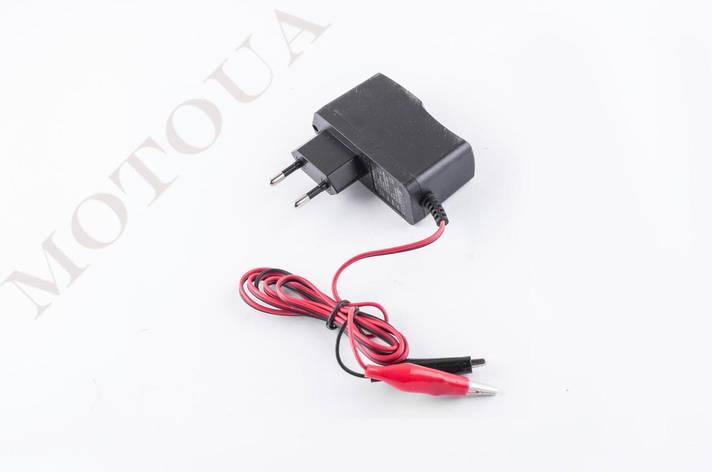 Зарядне для акумулятора 12V 1250мА GOLD, фото 2