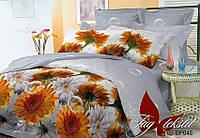 Комплект постельного белья BP045 семейный поликоттон