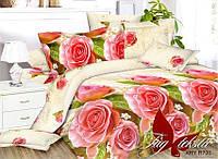 Комплект постельного белья XHY700 семейный поликоттон