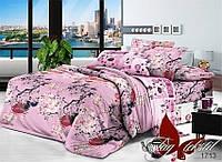 Комплект постельного белья 1713 двуспальный евро поплин