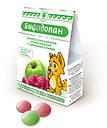 Пробиопан Арго (пробиотик, пребиотик, дисбактериоз, пищеварение, аллергия, для желудка, кишечника, гастрит), фото 4