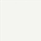 Экономпанель ДСП 18 Белый W908