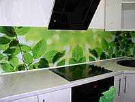 Кухонный фартук из стекла ветки дерева
