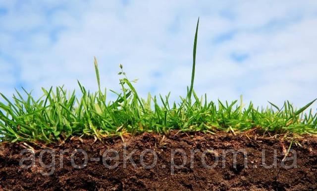 Кислотність грунтів та її вплив на живлення рослин