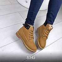 Женские ботинки Timberland , фото 1