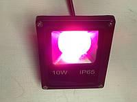 Светодиодный линзованый фитопрожектор SL-10GLens 10W IP65 (full fito spectrum led) черный Код.59096