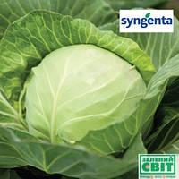 Семена капусты Миррор F1 2500 семян (Syngenta) — УЛЬТРА-РАННИЙ гибрид (45-50 дней), белокочанная.