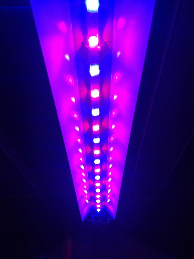 светодиодная фитолампа подвесная