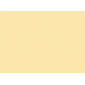 Экономпанель ДСП 18 Желтая пастель U107