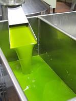 Агурелио - масло из зеленых оливок