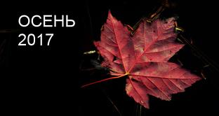 Киев захлестнула волна квартирных краж