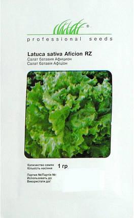 Семена салата Афицион 1 г, Rijk Zvaan, фото 2