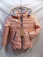 Детская куртка зима девочка на меху оптом