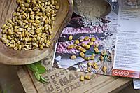 Кукуруза жареная соленая 40 гр.