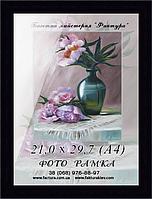 Фоторамка пластиковая, рамка для фото, дипломов, сертификатов, грамот, графики, акварели, пастели А4 (21х29,7)