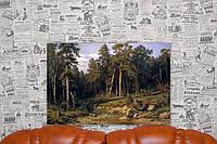 Сосновый бор. Мачтовый лес в Вятской губернии.  И.И.Шишкин. 40х60 см. Репродукция.