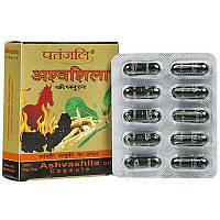 Ашвашила /Ashvashila (усталость, стресс, общая слабость,энергетик, усиливает потенцию)