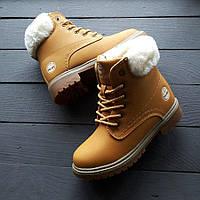 Зимние женские ботинки Timberland светло-коричневые с мехом