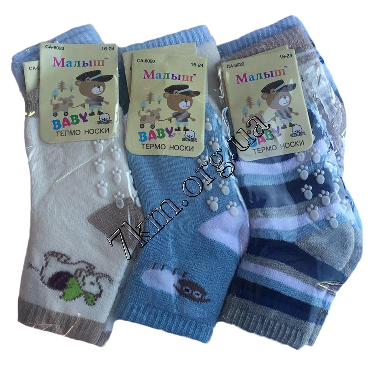 Шкарпетки дитячі махра для хлопчиків Малюк 8-16 місяців Оптом CA-8020