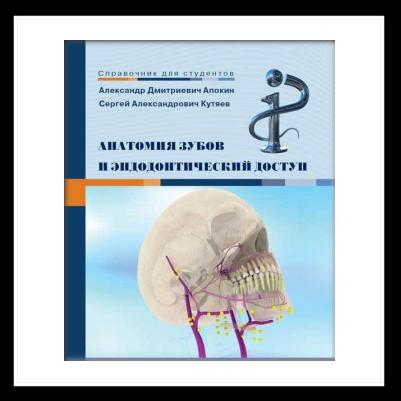 Анатомія зубів і ендодонтичний доступ