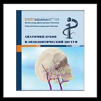 Анатомия зубов и эндодонтический доступ