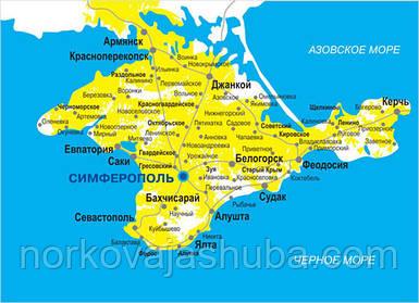 Доставка норковой шубы на примерку в любой город Крыма.  Доставка в Крым!