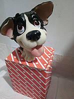 копилки в виде собачки-отличный подарок на Новый Год