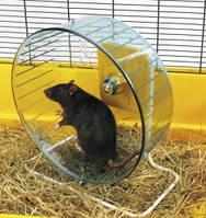 Тренажер колесо для хомяков и крыс, Savic РОЛЛИ (Rolly Giant+Stand), пластик, 27,5см