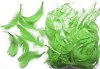 Перья цвета хаки для декорирования (120 шт, 5-10 см)