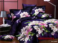 Двуспальный набор постельного белья 180*220 из Ранфорса №086 Черешенка™