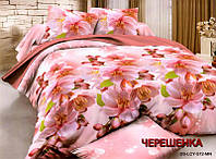 Двуспальный набор постельного белья 180*220 из Ранфорса №326 Черешенка™