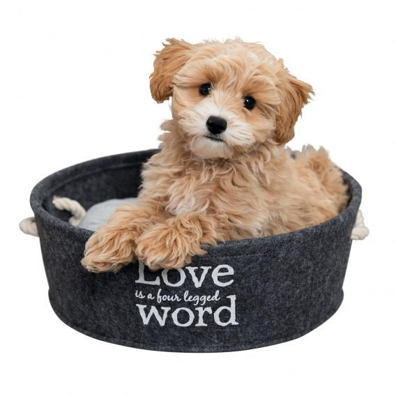 Trixie TX-38395  Bett Lian лежак для собак и кошек 37 cm