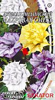 """Семена цветов Дурман индийский махровая смесь, 5 шт, """"Семена Украины"""""""