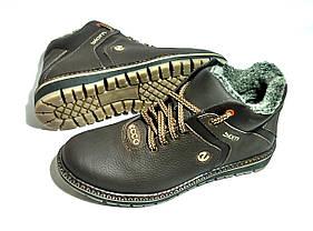 Мужские  зимние кожаные ботинки Ecco Biom brown