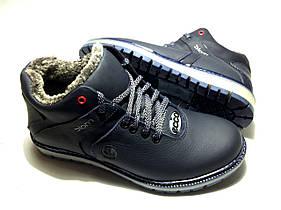 Мужские  зимние кожаные ботинки Ecco Biom blue