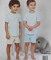 Комплект з 2х літніх піжамок (футболка+шортики), р.68