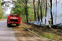 Пожежа на території Красноградського лісництва у Харківській області