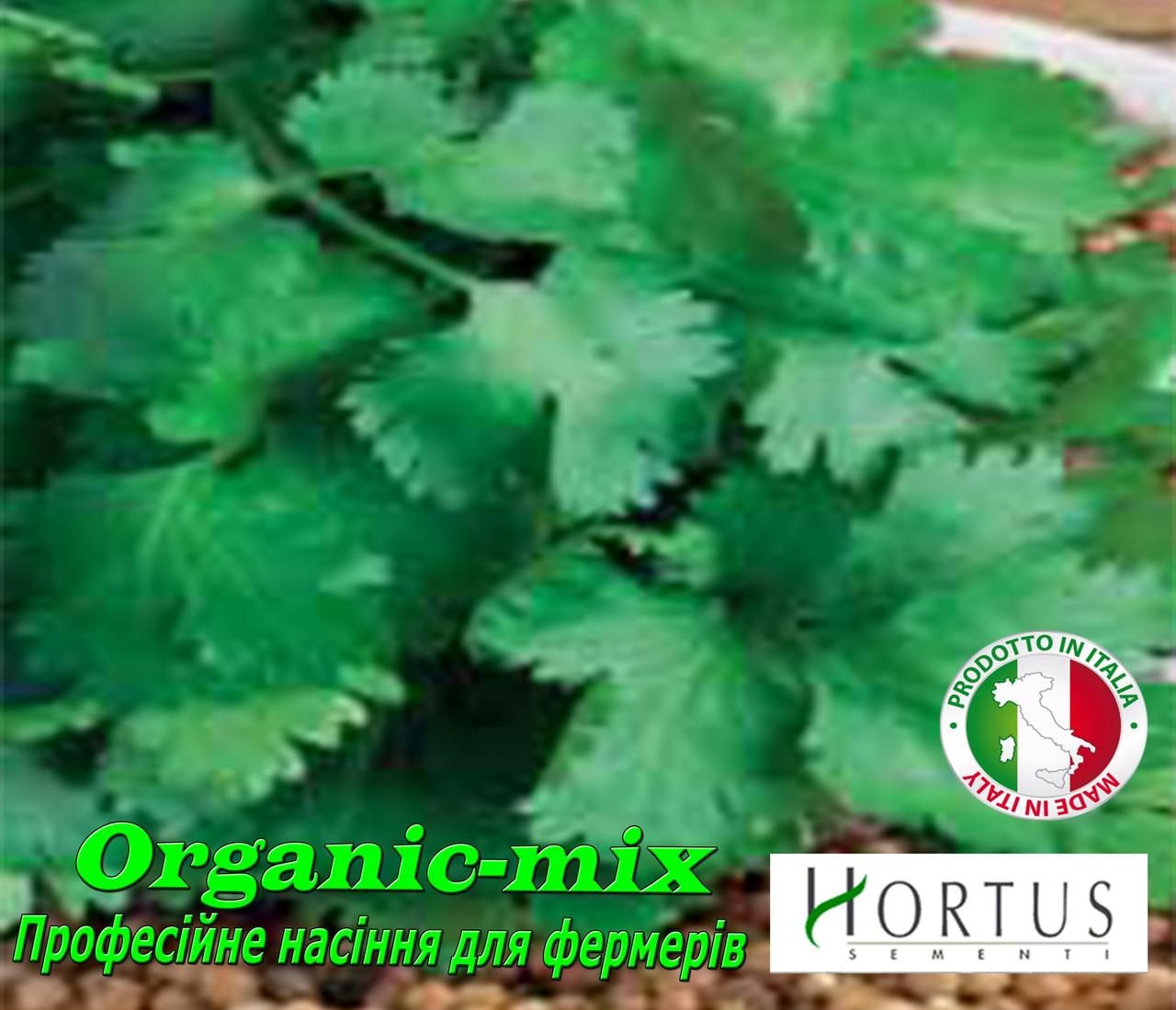 Семена, Кориандр (Кинза) Американо, Италия (проф.пакет 500 грамм)