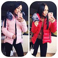 Женская теплая куртка красный,синий,.пудра,черный АР8653