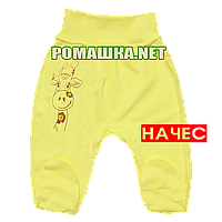 Ползунки (штаны) на широкой резинке р. 56 с начесом р. 56 ткань ФУТЕР 100% хлопок ТМ Алекс 3180 Желтый А