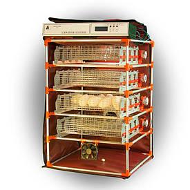 Инкубатор автоматический Zoom Goose 112