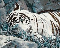 Картина раскраска по номерам Белый тигр 40х50см от бренда Идейка